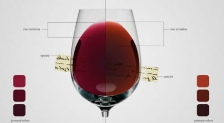 infografía sobre vinos tintos