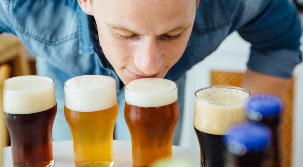 catador viendo varias cervezas